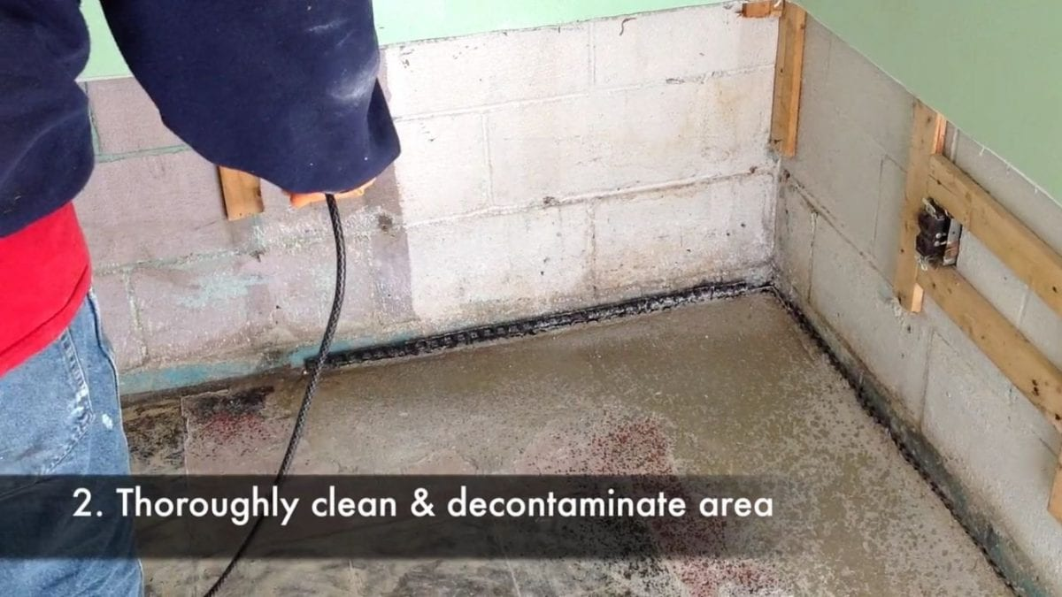 D-Bug Waterproofing thoroughly cleaning and decontaminating a wall that suffered from mold