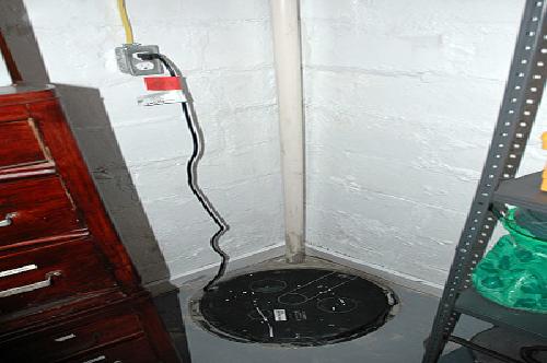D-Bug Waterproofing sump pump