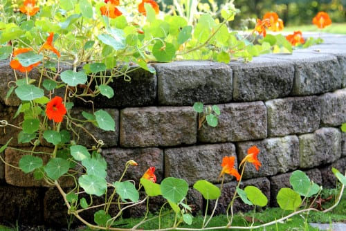 D-Bug Waterproofing can build beautiful retaining walls