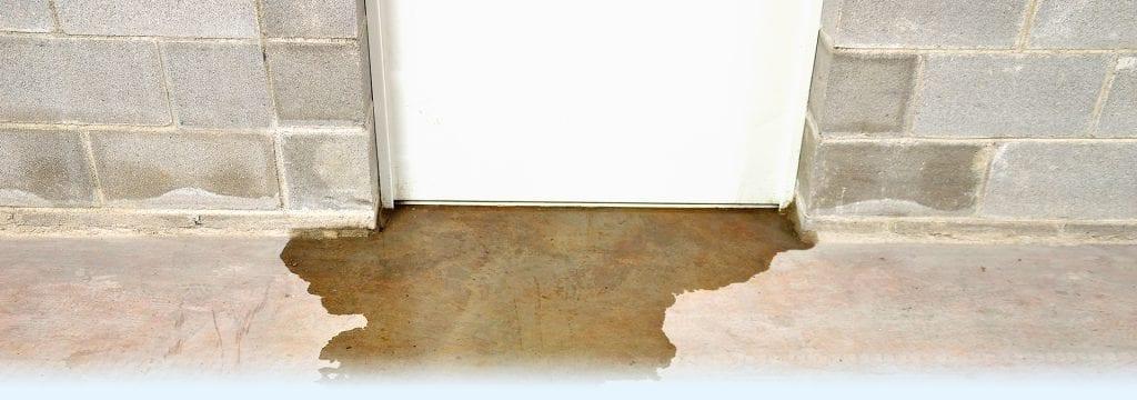 D-Bug Waterproofing can waterproof your basement