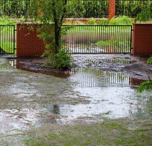 Water Pooling in Yard Causing Wet Basement