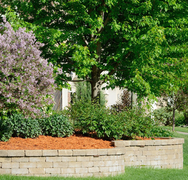 Landscape Retaining Wall from D-Bug Waterproofing